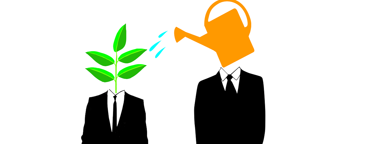 Meanings of Seed Funding and Angel Investors